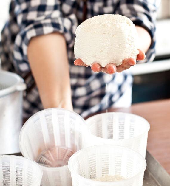 Refika'dan hellim peyniri yapımı - evde hellim yapımı